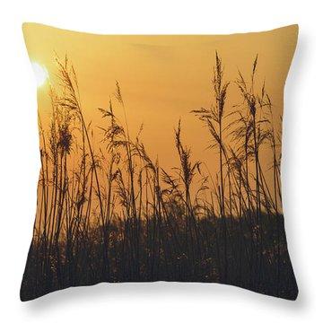 Throw Pillow featuring the photograph View Of Sun Setting Behind Long Grass A by Jacek Wojnarowski