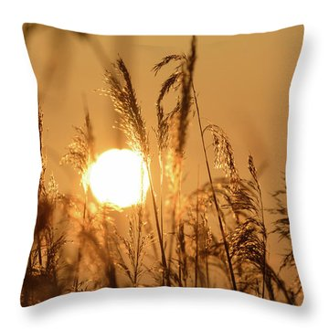 View Of Sun Setting Behind Long Grass B Throw Pillow