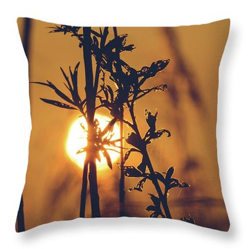 View Of Sun Setting Behind Long Grass D Throw Pillow