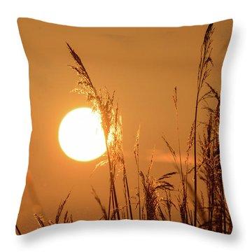 Throw Pillow featuring the photograph View Of Sun Setting Behind Long Grass E by Jacek Wojnarowski