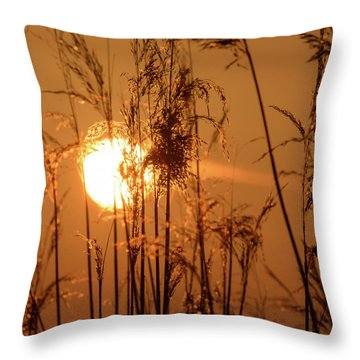 Throw Pillow featuring the photograph View Of Sun Setting Behind Long Grass F by Jacek Wojnarowski
