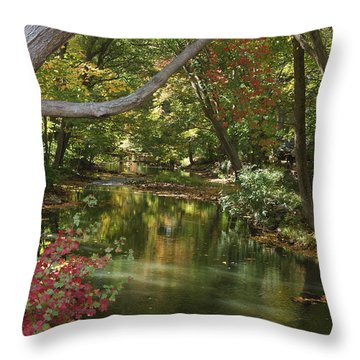 View Of The Mill River Throw Pillow