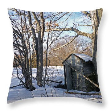 View Of The Past Throw Pillow by Claire Bull