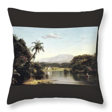 View On The Magdalena River Throw Pillow