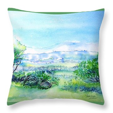 View Through The Gap,wicklow  Throw Pillow by Trudi Doyle