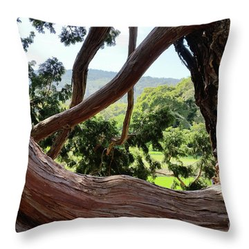 View Through The Tree Throw Pillow by Carol Lynn Coronios