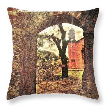 View To The Past Throw Pillow