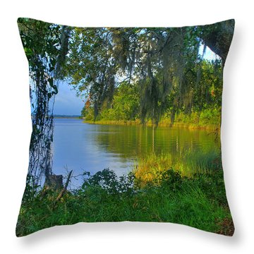View Under The Spanish Moss Throw Pillow