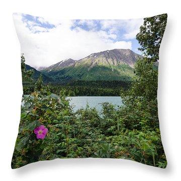 Views In Alaska Throw Pillow