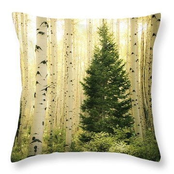 Vigilant  Throw Pillow by The Forests Edge Photography - Diane Sandoval
