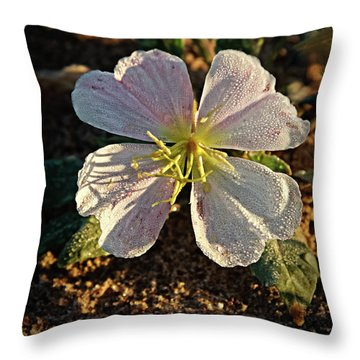 Throw Pillow featuring the photograph Vignette Evening Primrose by Robert Bales