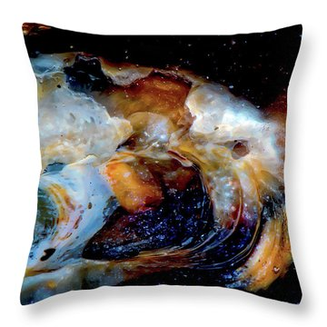 Vilano Sea Shell Constellation Throw Pillow