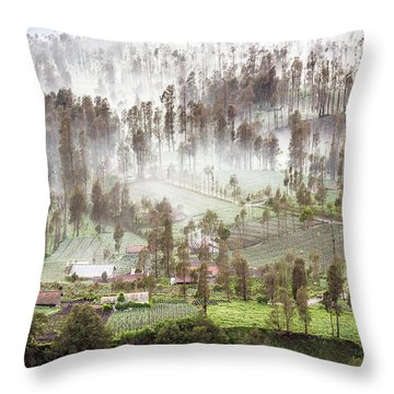 Throw Pillow featuring the photograph Village Covered With Mist by Pradeep Raja Prints