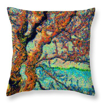 Vincent At Duxbury Bay Throw Pillow