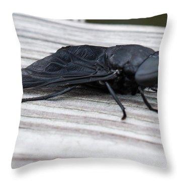 Vincent Price Or Jeff Goldblum? Throw Pillow