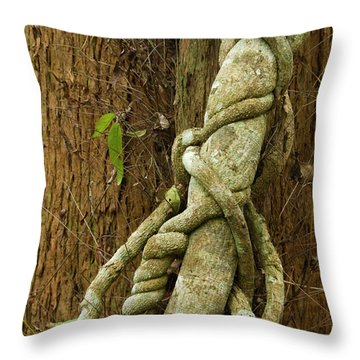 Throw Pillow featuring the photograph Vine by Werner Padarin