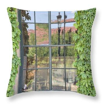 Vined Window II Throw Pillow