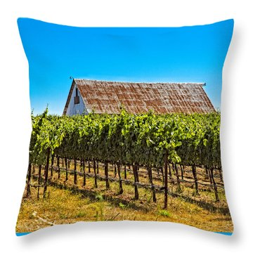Vines And Barn Throw Pillow