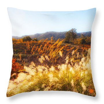 Throw Pillow featuring the photograph Vineyard Afternoon By Mike-hope by Michael Hope