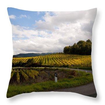 Vineyard Glow Throw Pillow by Rae Tucker