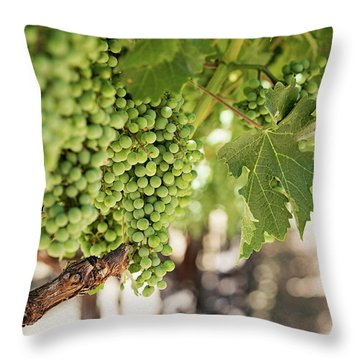 Throw Pillow featuring the photograph Wine Vineyard Of St. Helena - Grapevine Napa Valley Photography by Melanie Alexandra Price