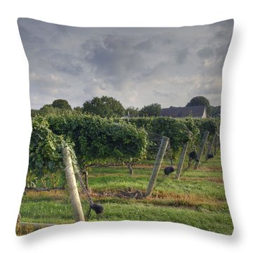 Vineyard With  Barn Throw Pillow
