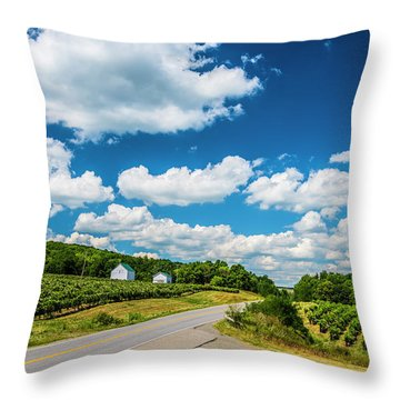 Throw Pillow featuring the photograph Vineyards In Summer by Steven Ainsworth