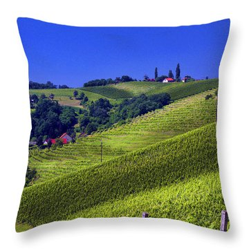 Vineyards Of Jerusalem Slovenia Throw Pillow by Graham Hawcroft pixsellpix