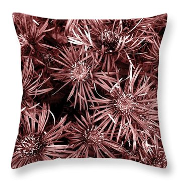 Vintage Asters Throw Pillow