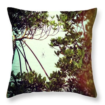 Throw Pillow featuring the digital art Vintage Banana Spider by Megan Dirsa-DuBois