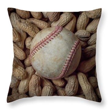 Throw Pillow featuring the photograph Vintage Baseball And Peanuts Square by Terry DeLuco