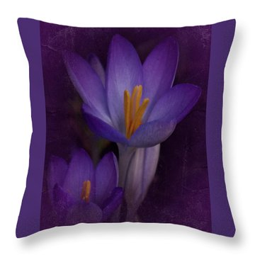Throw Pillow featuring the photograph Vintage Crocus 2017 by Richard Cummings