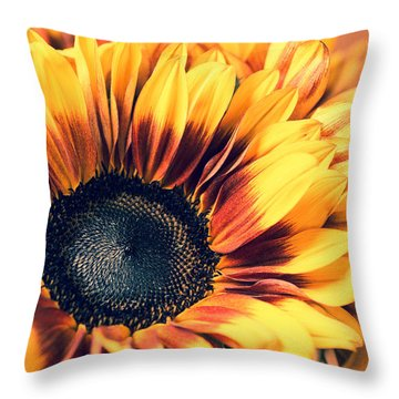 Throw Pillow featuring the photograph Vintage Fall by Julie Andel