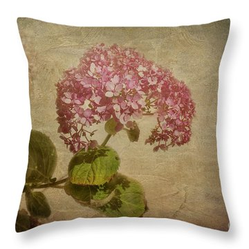 Throw Pillow featuring the photograph Vintage Hydrangea by Elaine Teague