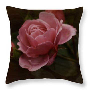 Throw Pillow featuring the photograph Vintage October Pink Rose by Richard Cummings