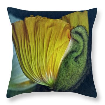 Throw Pillow featuring the photograph Vintage Poppy 2017 No. 1 by Richard Cummings