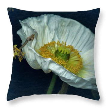 Throw Pillow featuring the photograph Vintage Poppy 2017 No. 2 by Richard Cummings