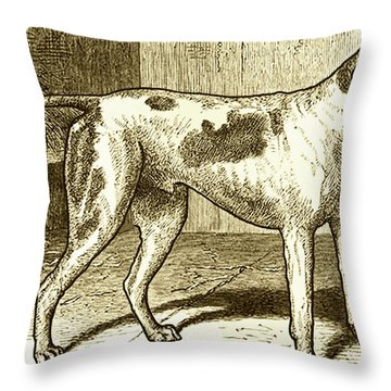 Vintage Sepia German Shorthaired Pointer Throw Pillow