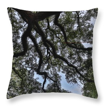 Vintage Shade Throw Pillow