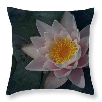 Vintage Water Lily Throw Pillow