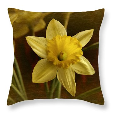 Vintage Yellow Narcissus Throw Pillow by Richard Cummings