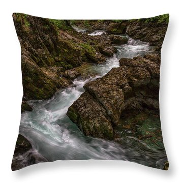 Throw Pillow featuring the photograph Vintgar Gorge Rapids - Slovenia by Stuart Litoff