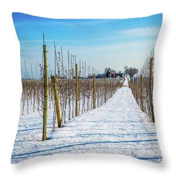 Vinyard On Down Road  Throw Pillow