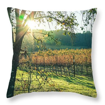 Vinyard Sunset Throw Pillow