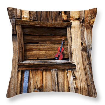Viola In Window Throw Pillow by Garry Gay