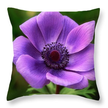 Violet Anemone Throw Pillow
