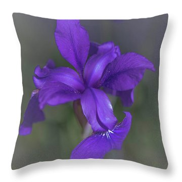 Violet Dream Throw Pillow by Bruce Pritchett