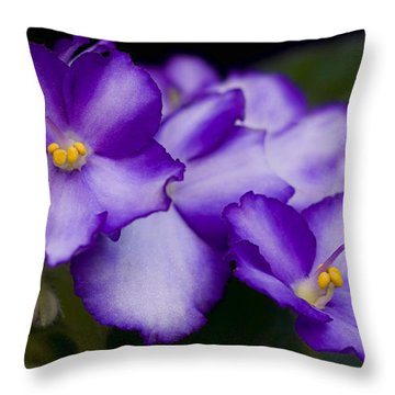 Violet Dreams Throw Pillow by William Jobes