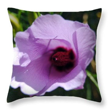 Alyogyne Hakeifolia 1 Throw Pillow