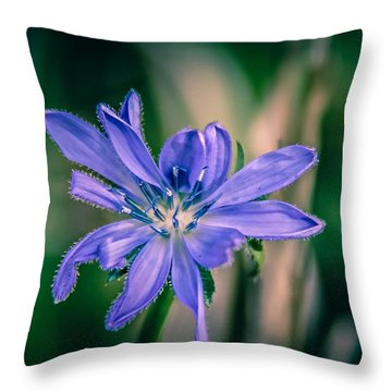 Throw Pillow featuring the photograph Violet by Michaela Preston